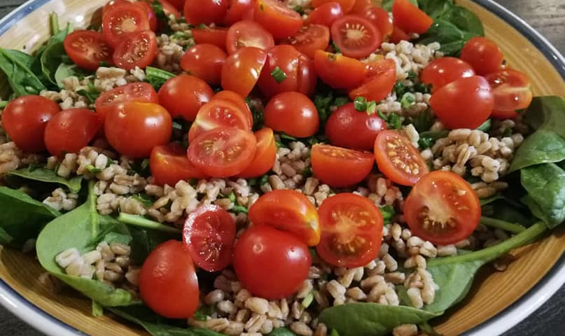 Zaļie salāti ar speltas grūbām Vegānu gaumē
