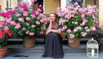 Kāpelējošās pelargonijas podos rozā ziediem