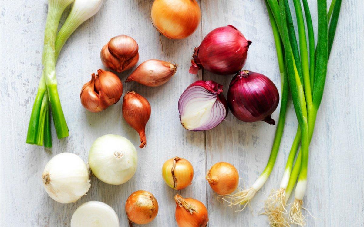 Sīksīpoli sīpolu audzēšanai – kādus izvēlēties?